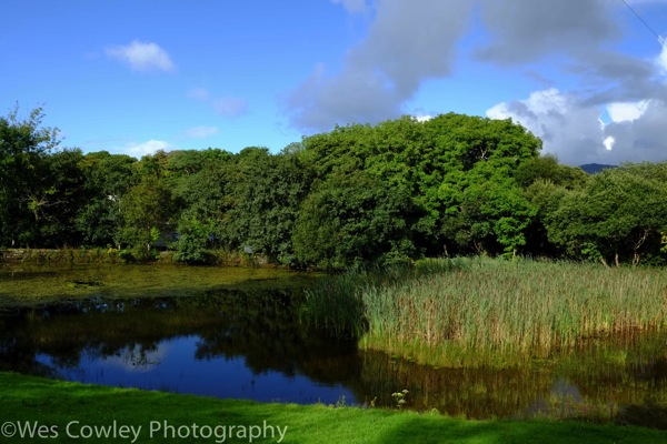 Pond at connemara park
