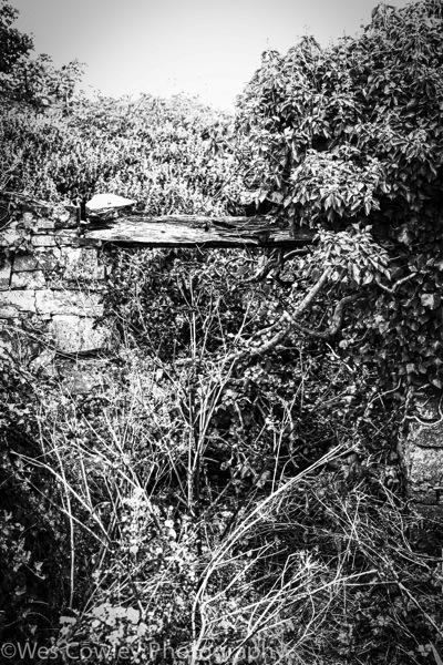 Inishmore gate to where