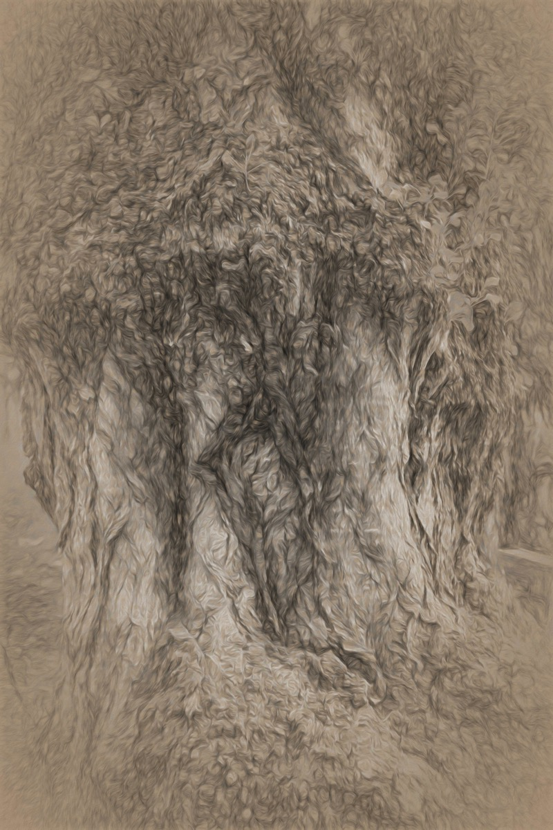 Tree oft pencil